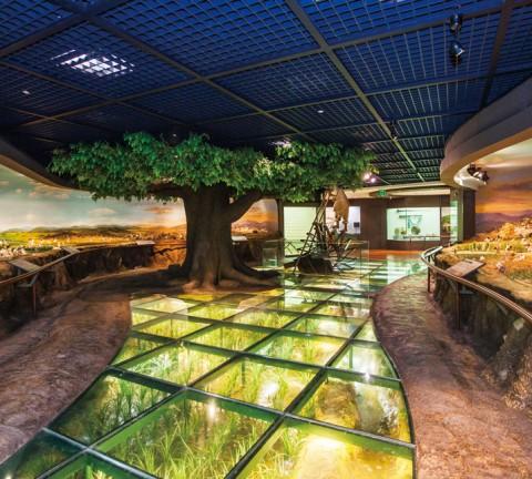 농업박물관